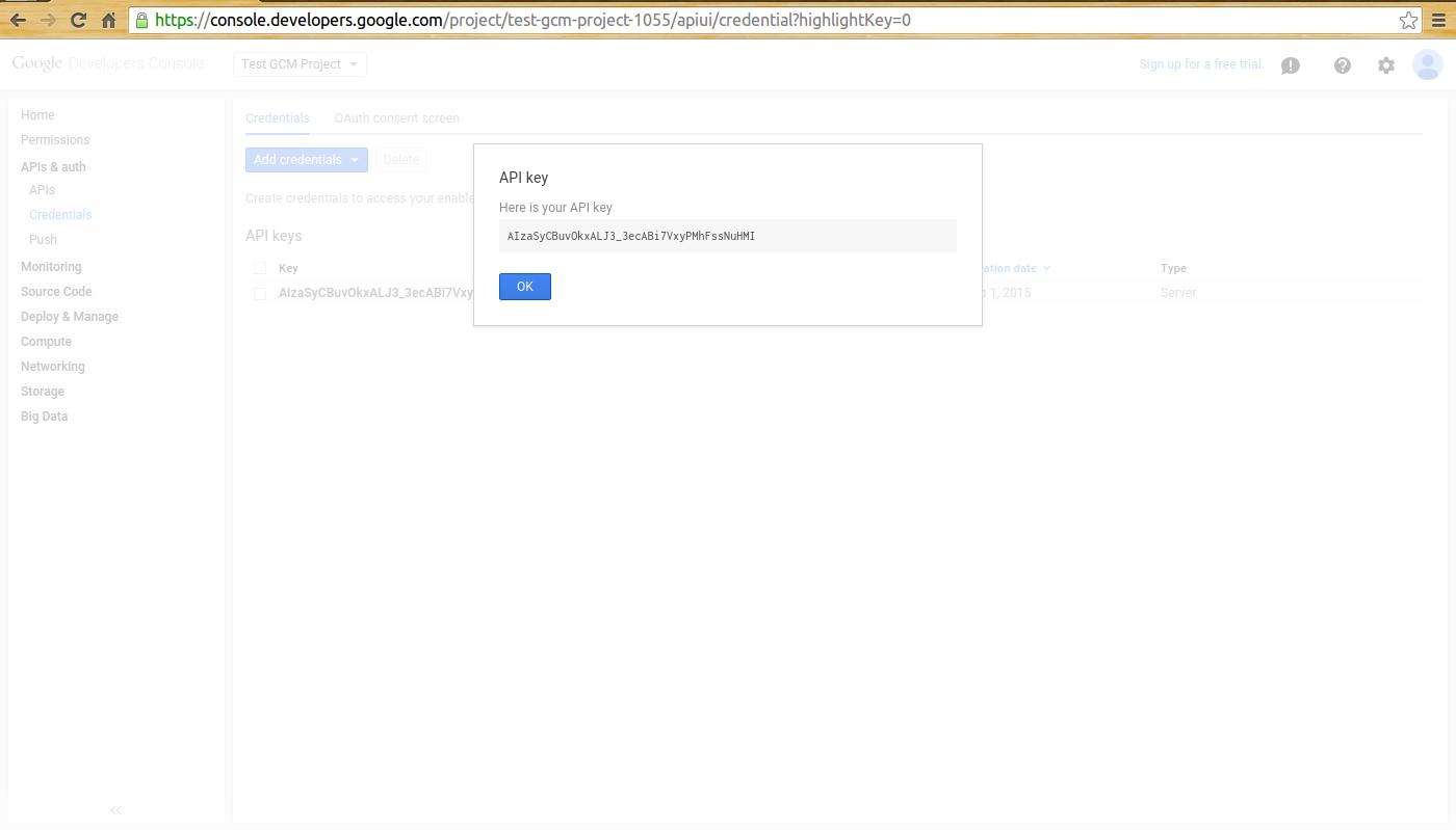 10-google_dev_console_generated_apikey